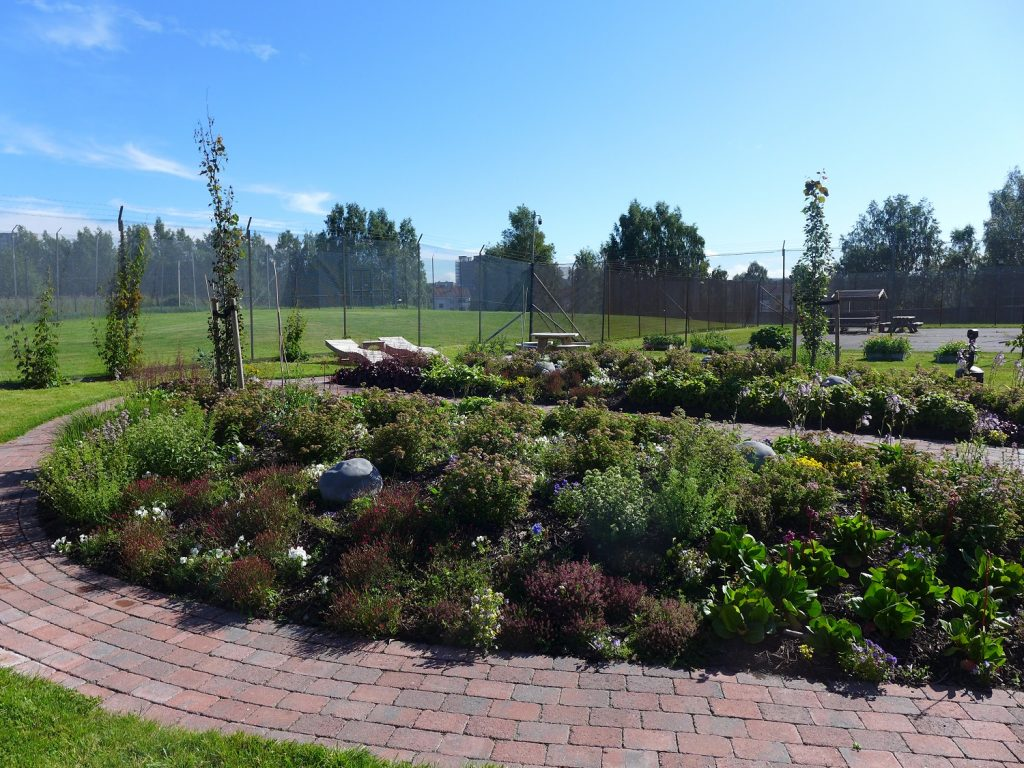 The garden was designed to bloom from early spring to late autumn. Inmates can lie on sunbeds, and harvest berries and leaves for tea. It is also possible to do some weeding, sit by yourself, or just take in the scent of all the different plants.